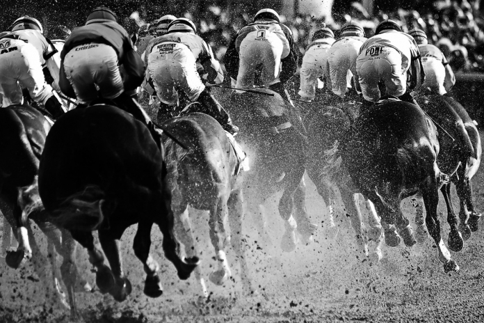 Rounding-for-Home-2015-Kentucky-Derby