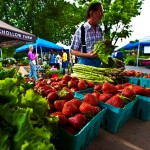 Farmers' Market SUM 17