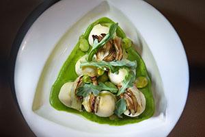 Riccota Gnudi- Fava bean cream, roasted fennel, broad beans and lemon jam - Photo Credit John Nation._preview